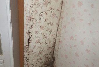洗面化粧台と壁に隙間が空いていた為、クロスが汚れています。今回の工事では、この隙間をひと工夫して埋めます!